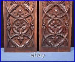 Pair of French Antique Gothic Revival Panels in Chestnut Wood Salvage